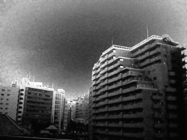 今日の天気は。。。