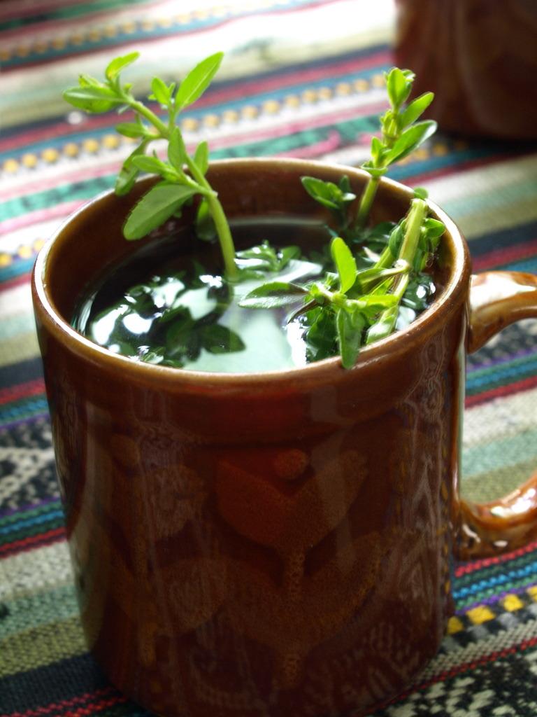 リアルミント茶