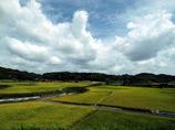 田園風景 in 鹿児島