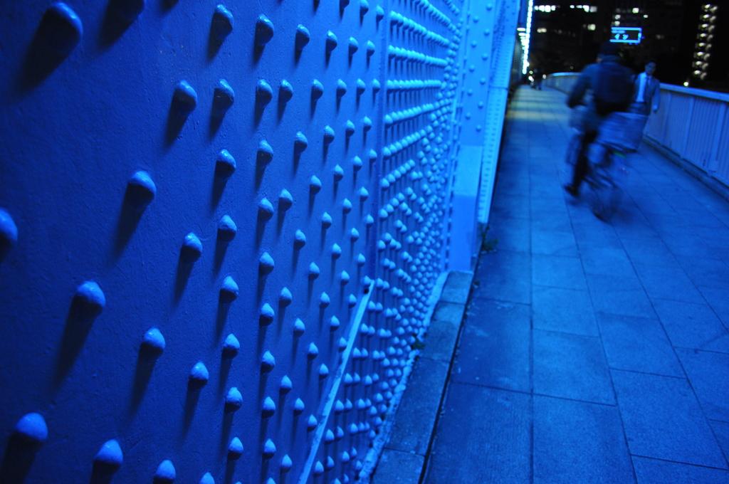 写真部東京(2008.11.26) 053