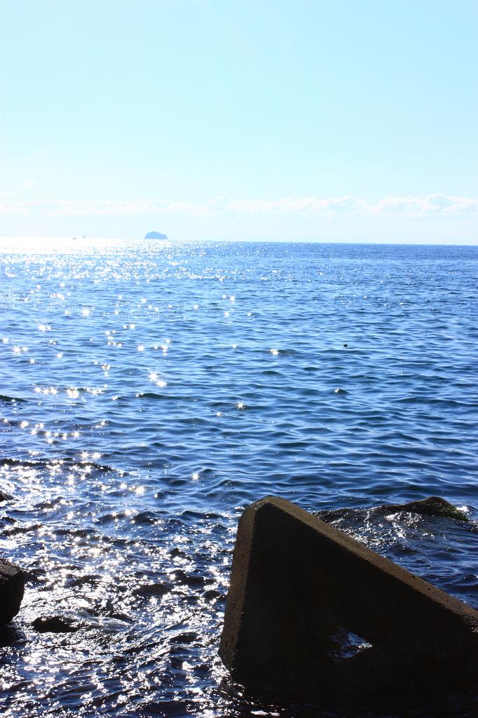 テトラと海