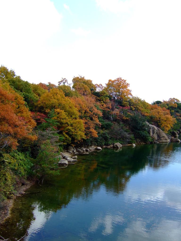 色づく湖畔