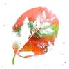 柿落ち葉 1