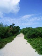 海へ続く坂道