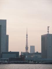 海からの東京タワー