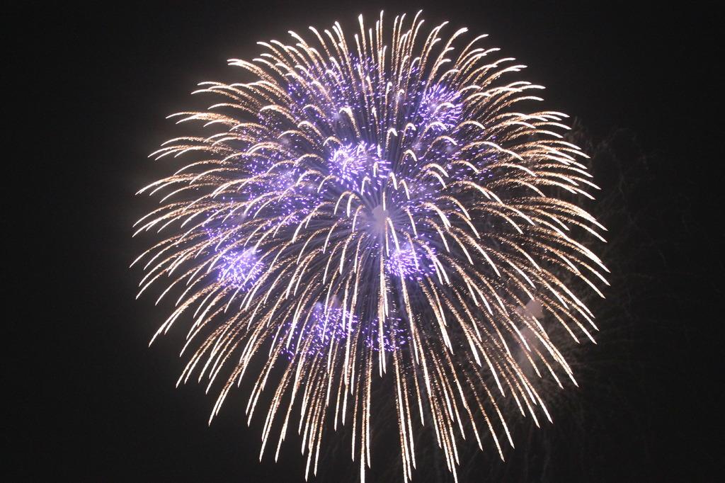2009年とりで利根川大花火(1)