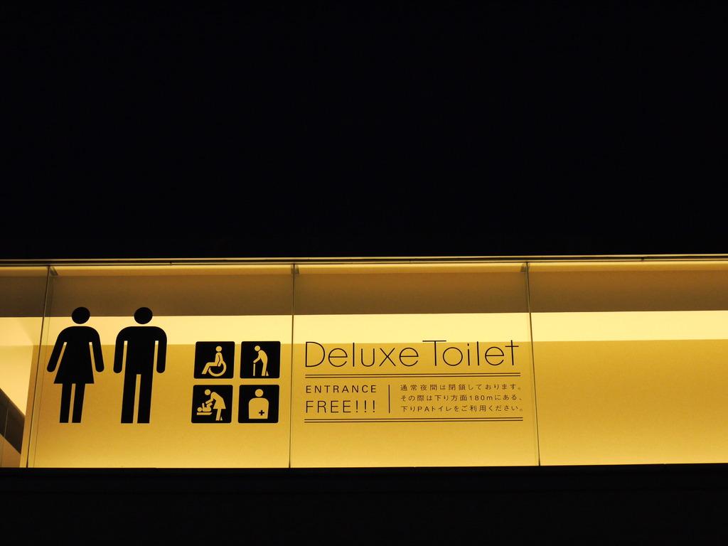 Deluxe Toilet !!