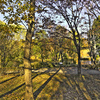 公園(HDR)