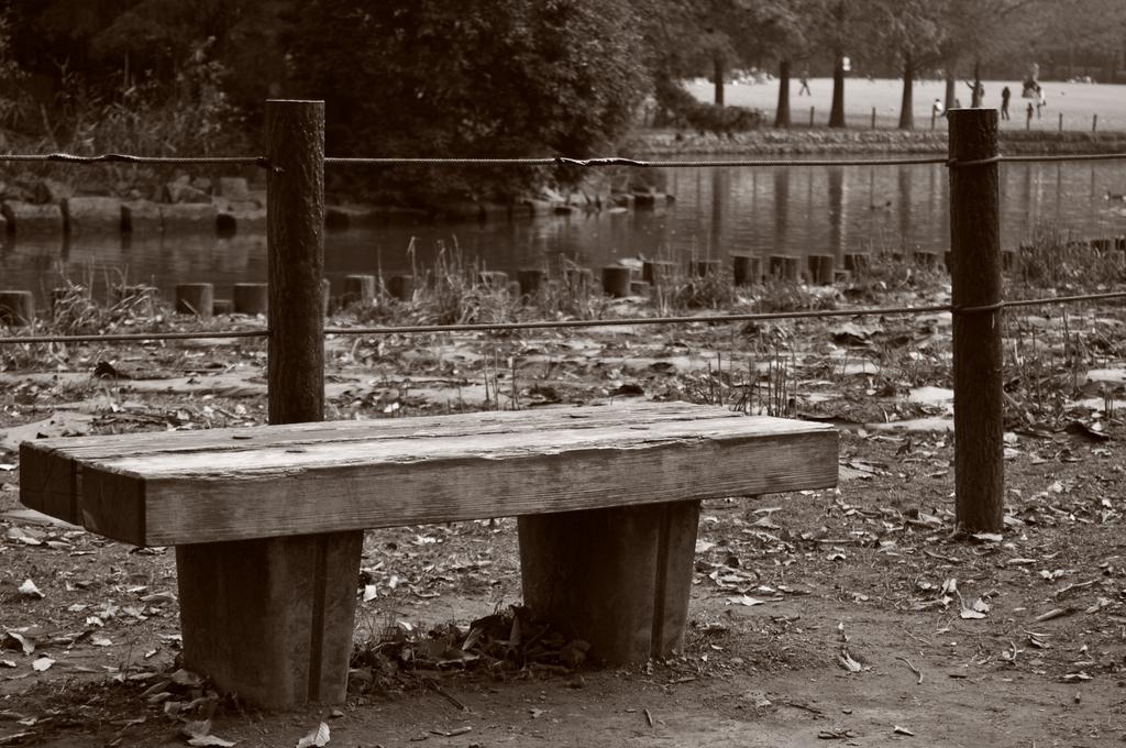 ベンチの秋