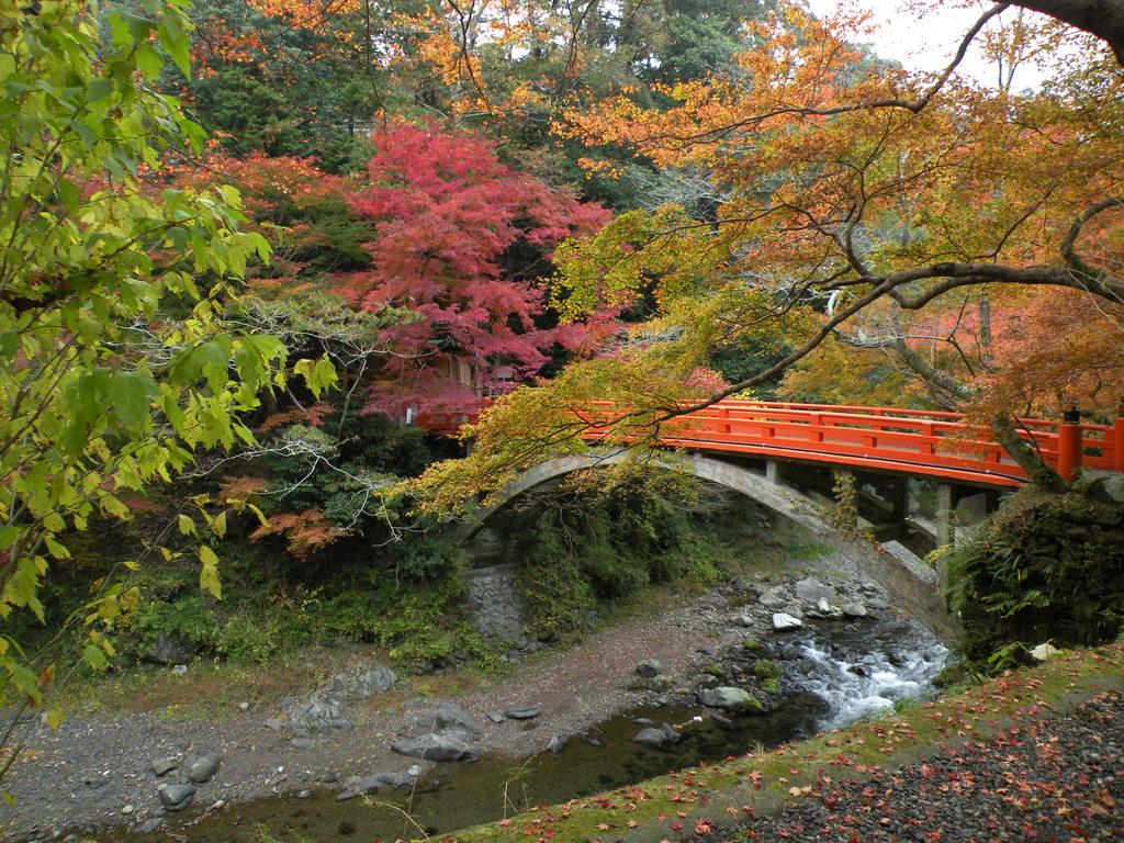 高雄西明寺指月橋