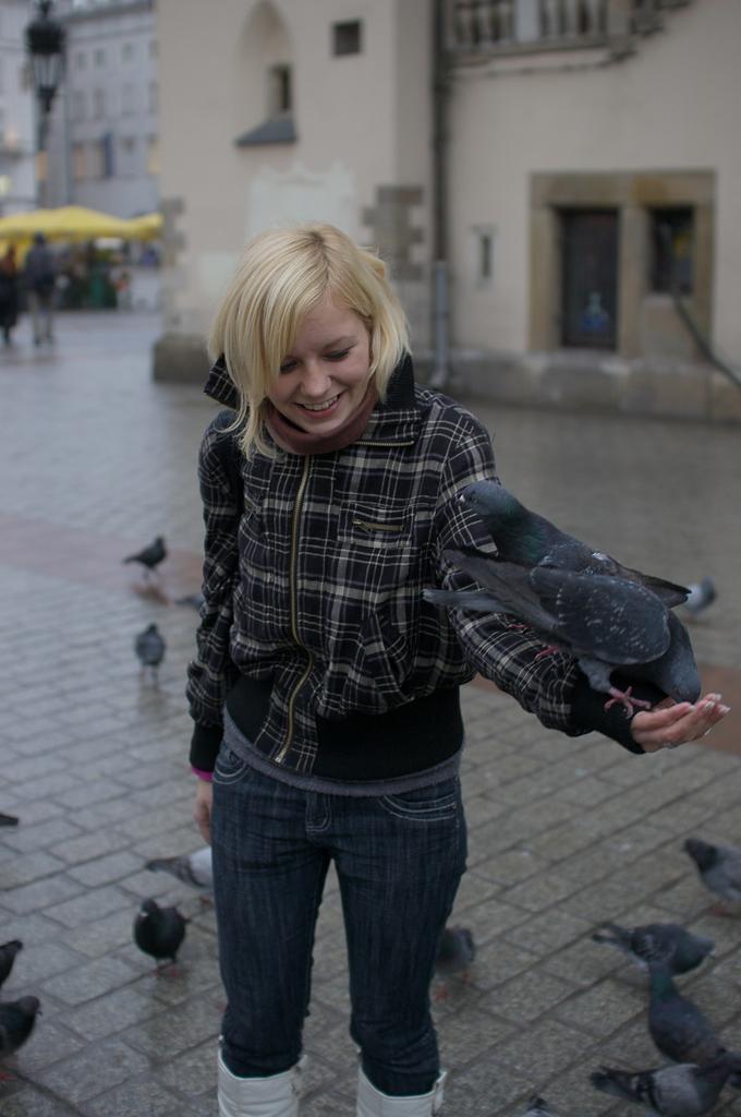 ハトと遊ぶ