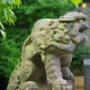 湯島天神の狛犬