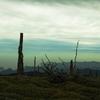 日の出ヶ岳と尾鷲灘