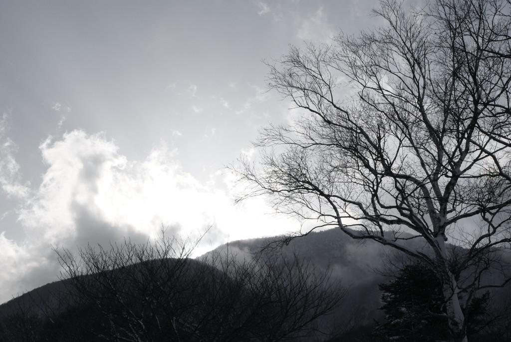 冬の侘しさ
