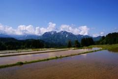 天空の田園