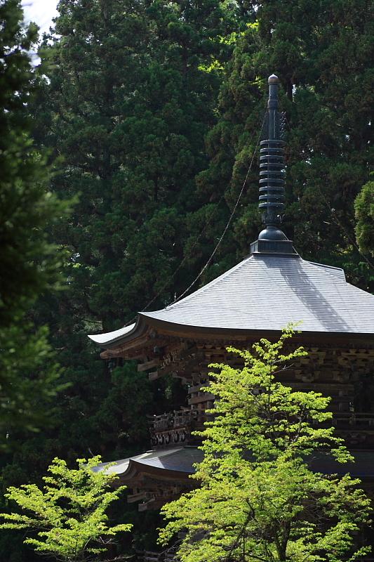 新緑と三重の塔