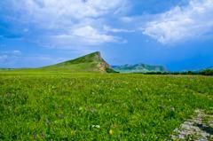 モンゴルの高原
