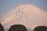富士のおやま