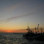 SANYO CA65で撮影した風景(夜明け前)の写真(画像)