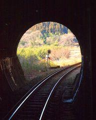 草木トンネル