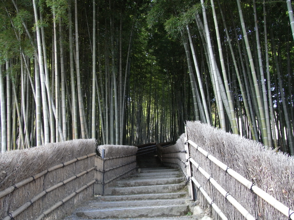 化野念仏寺の奥へ