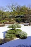 雪晴れの庭