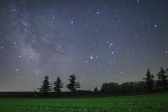 星空と緑一色の麦