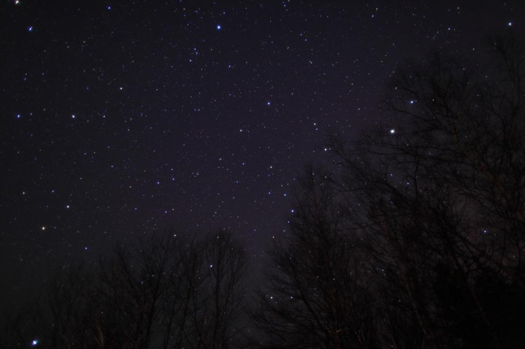 夜空を見上げると・・・・