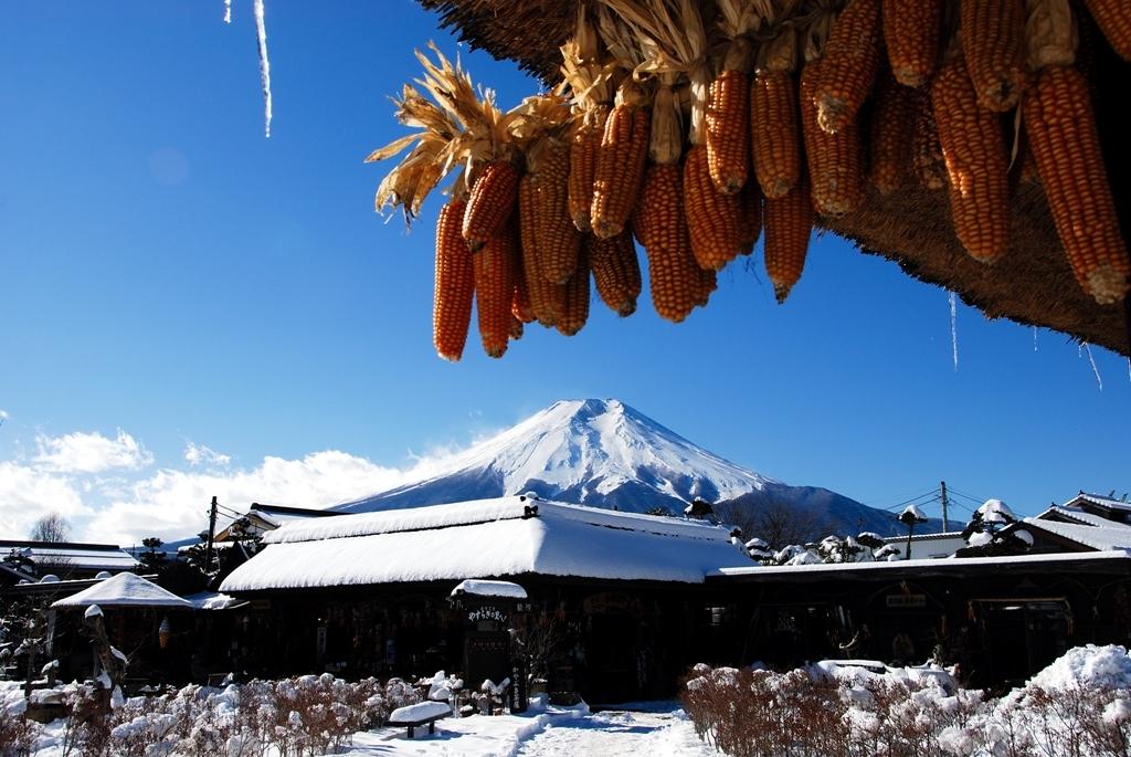 軒先の富士