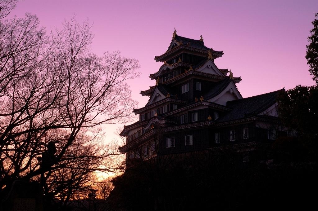 朝焼けの烏城