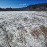 NIKON NIKON D700で撮影した風景(Senjo-ga-hara in winter.)の写真(画像)
