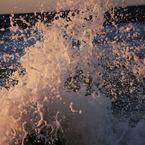 CANON Canon EOS 40Dで撮影した(シュワー!!)の写真(画像)