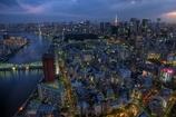 聖路加タワーの夜景