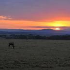 NIKON NIKON D300Sで撮影した風景(サバンナの夜明け)の写真(画像)