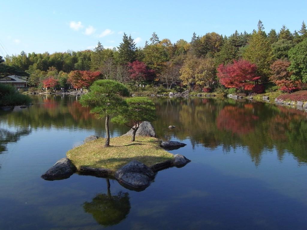 2009_1121GX200昭和記念公園の紅葉02