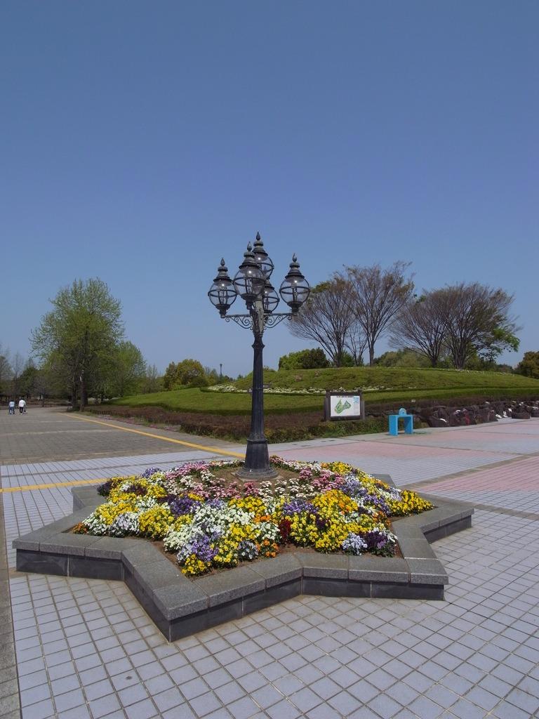 柏の葉公園の新緑5(2009_0419GX200)