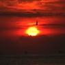 CANON Canon EOS Kiss X2で撮影した風景(朝)の写真(画像)