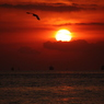 CANON Canon EOS Kiss X2で撮影した風景(夜明け)の写真(画像)