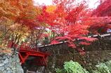 両界山「横蔵寺」 ~2010~