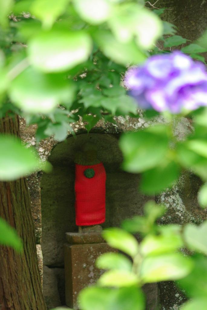 鎌倉明月院