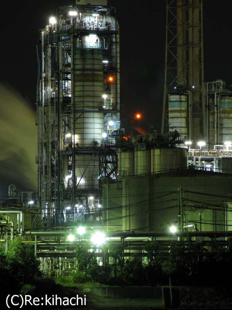 Night View Of Plant