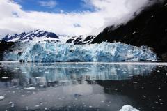 サプライズ氷河