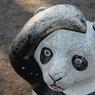 NIKON NIKON D40で撮影した動物(うっかりパンダ)の写真(画像)