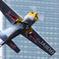 RedBull Flight Performance '12