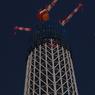 PENTAX PENTAX K-7で撮影した建物(夜の東京スカイツリー)の写真(画像)