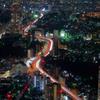 Arteries of Tokyo City 都市動脈