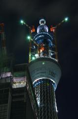 東京スカイツリー成長記録 2010.12.23
