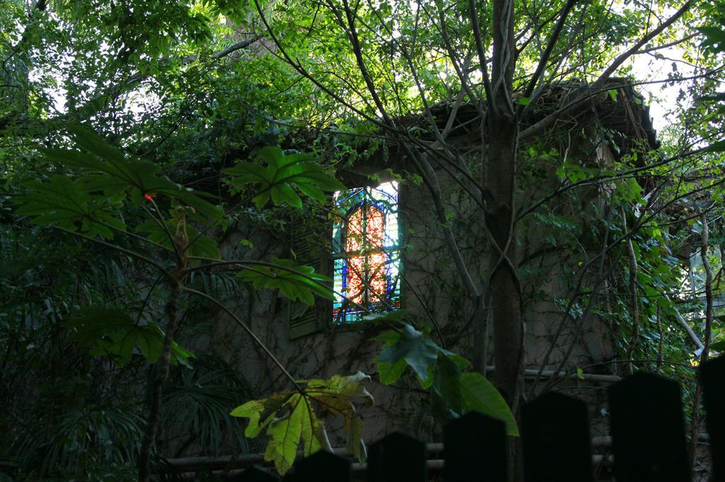 廃墟からの光