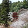 春の五重塔