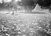 MAMIYA M645 1000Sで撮影した(秋葉)の写真(画像)